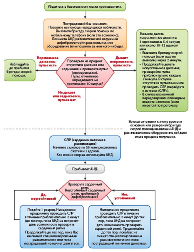 Алгоритм СЛР взрослых пациентов медицинскими работниками