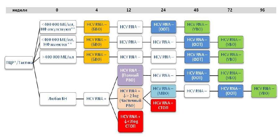 Алгоритм лечения ХГС, вызванного вирусами 1 или 4 генотипов, в режиме двойной терапии
