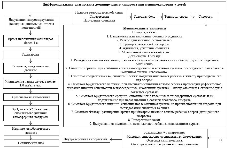 Дифференциальная диагностика доминирующего синдрома при менингококцемии у детей