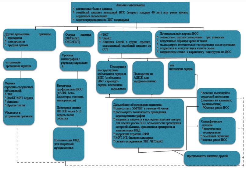 Диагностический алгоритм действий при обращении пациента с эпизодами устойчивой ЖТ/ФЖ