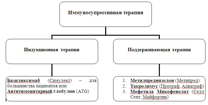 Организационная схема
