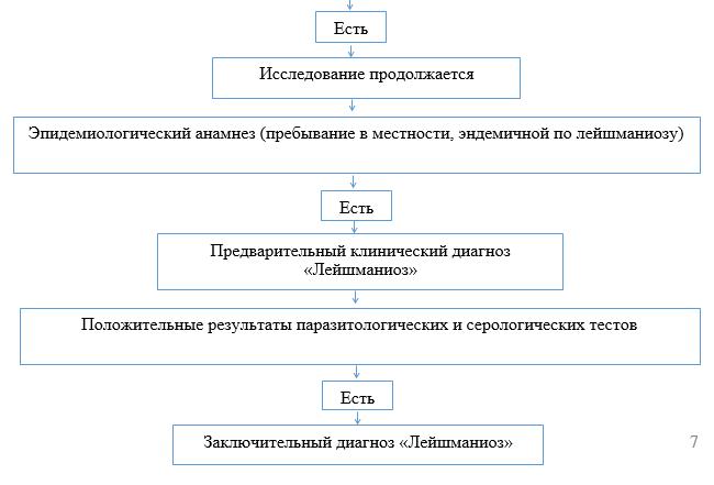 Алгоритм диагностики висцерального лейшманиоза