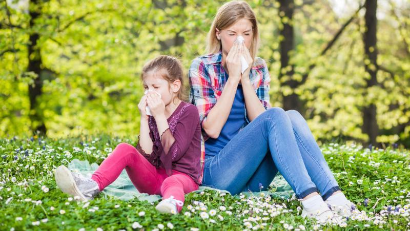 Предрасположенность к аллергии передается по наследству