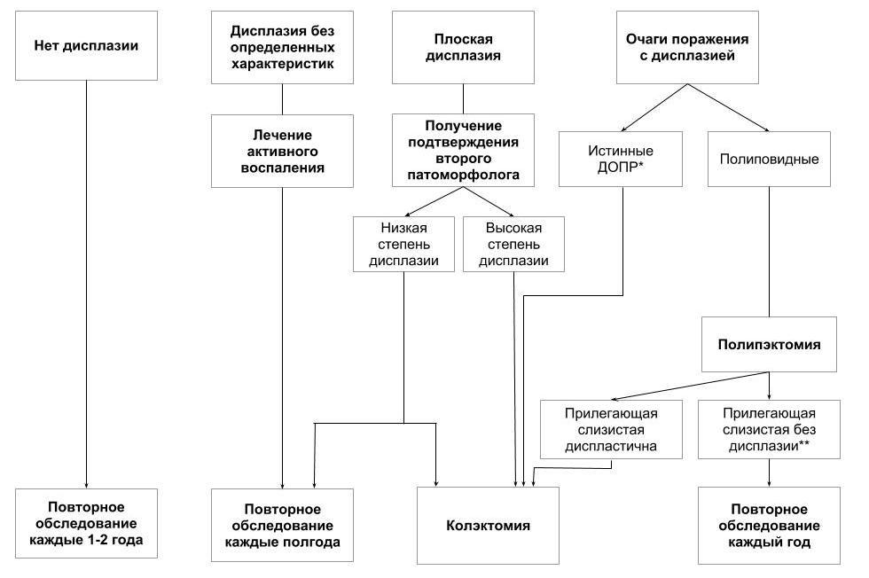 Менеджмент пациентов с полипами кишечника