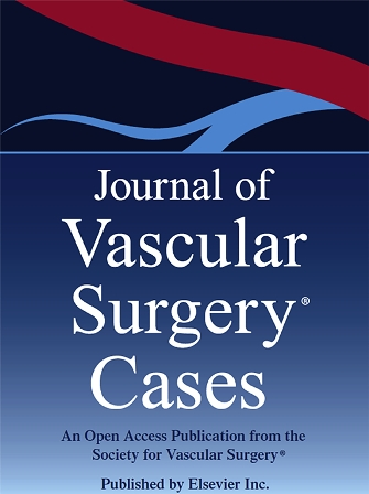 Journal of Vascular Surgery