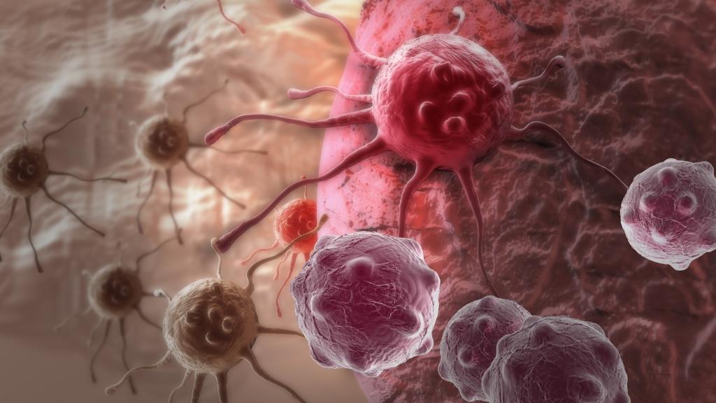 Лечение рака. Новые исследования