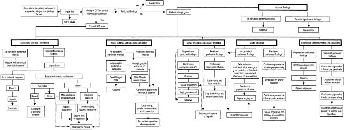 Алгоритм диагностики и лечения острых сосудистых болезней кишечника