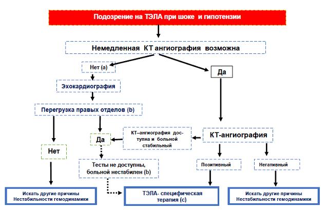 Алгоритм действий при подозрении на ТЭЛА высокого риска с шоком и гипотензией