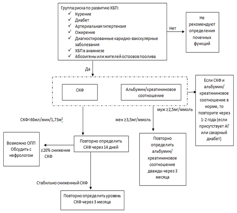 Алгоритм диагностики ХБП