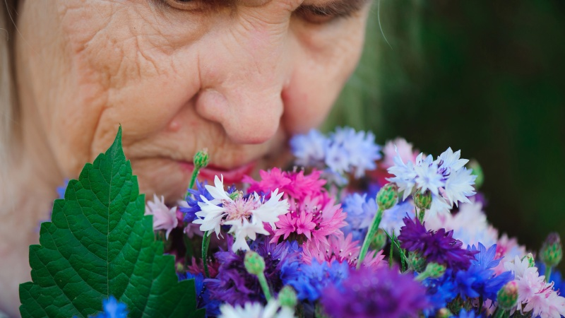 В носу человека имеется около 6 млн обонятельных клеток