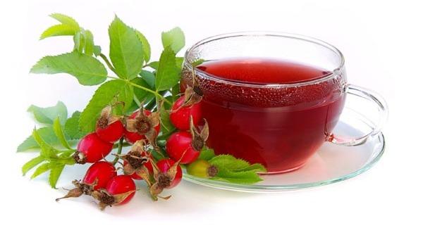 Плоды шиповника содержат рекордное количество витамина С