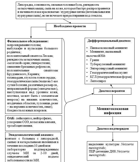 Диагностический алгоритм Менингококковая инфекция у детей