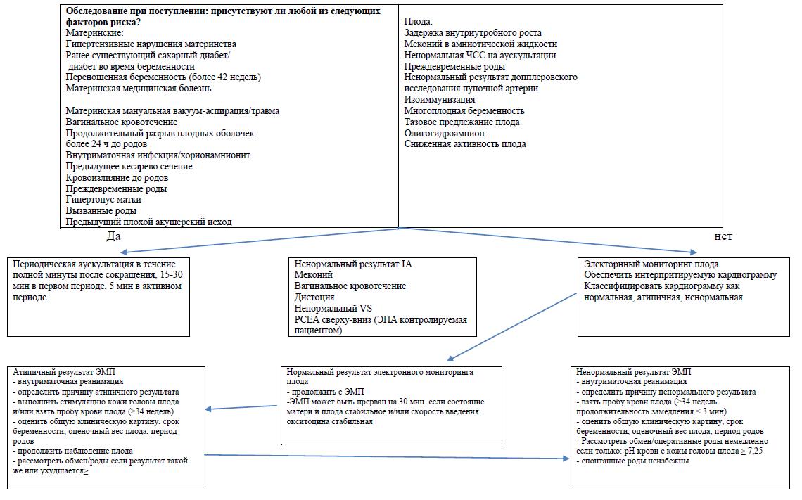 Клиническое управление нормального, нетипичного и ненормального результата электронного мониторинга плода (во время родов)