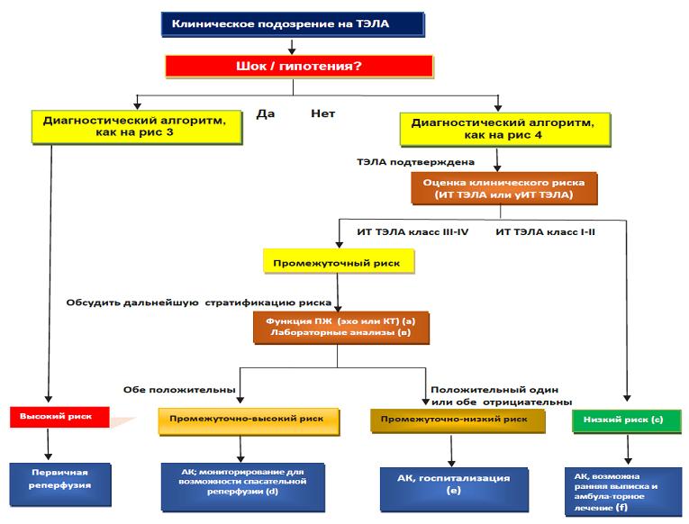 Алгоритм действий при неотложных ситуациях при подозрении на ТЭЛА