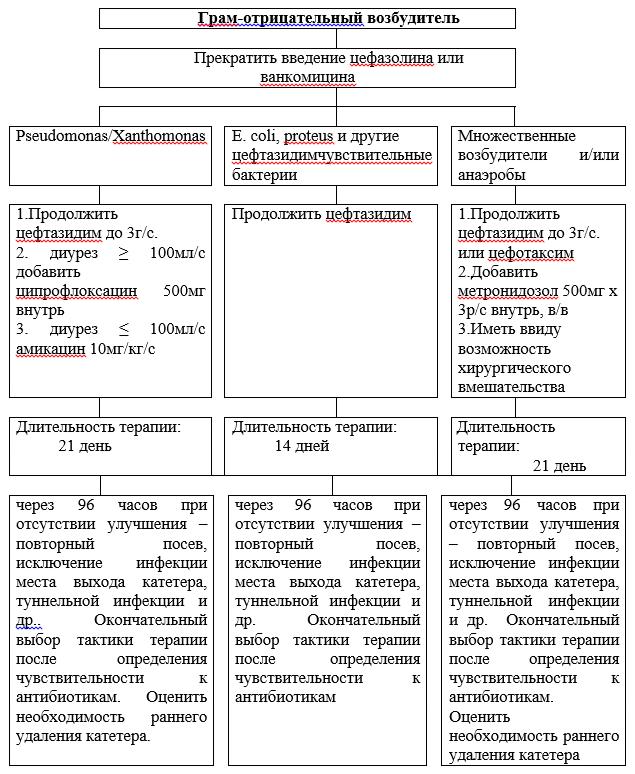 Тактика антибактериальной терапии при выявлении Грам-отрицательной флоры
