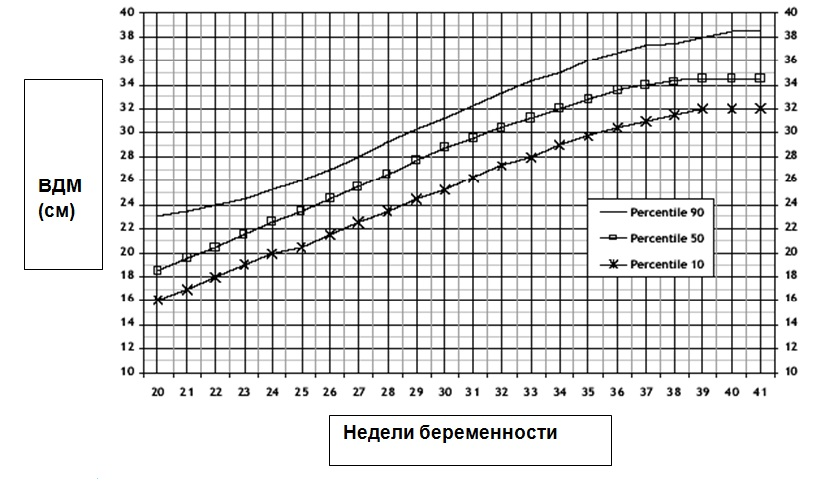Гравидограмма