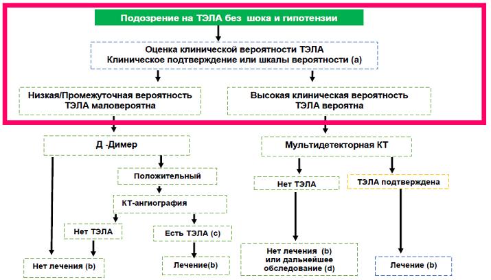 Алгоритм действий при подозрении на ТЭЛА невысокого риска (без шока и гипотензии)