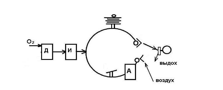 Схема работы наркозного аппарата без реверсии с использованием нереверсивного клапана