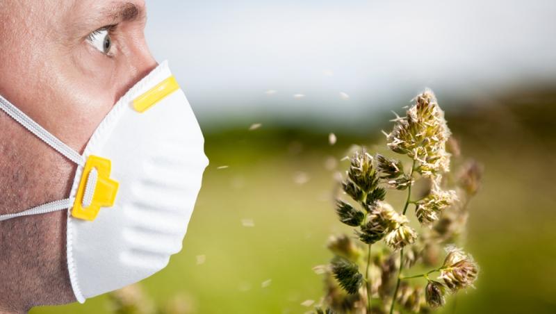 Симптомы сезонной аллергии проявляются ежегодно в одно и то же время