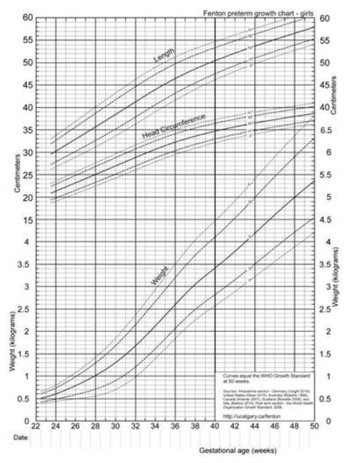 Центильные кривые параметров развития девочек в зависимости от гестационного возраста