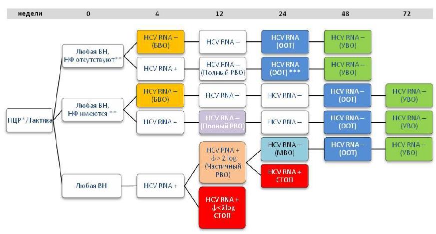 Алгоритм лечения ХГС, вызванного вирусами 2,3 (5,6) генотипов, в режиме двойной терапией