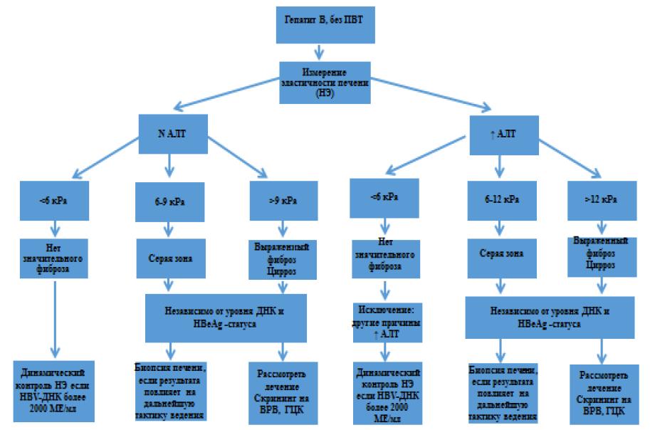 Алгоритм оценки тяжести заболевания печени